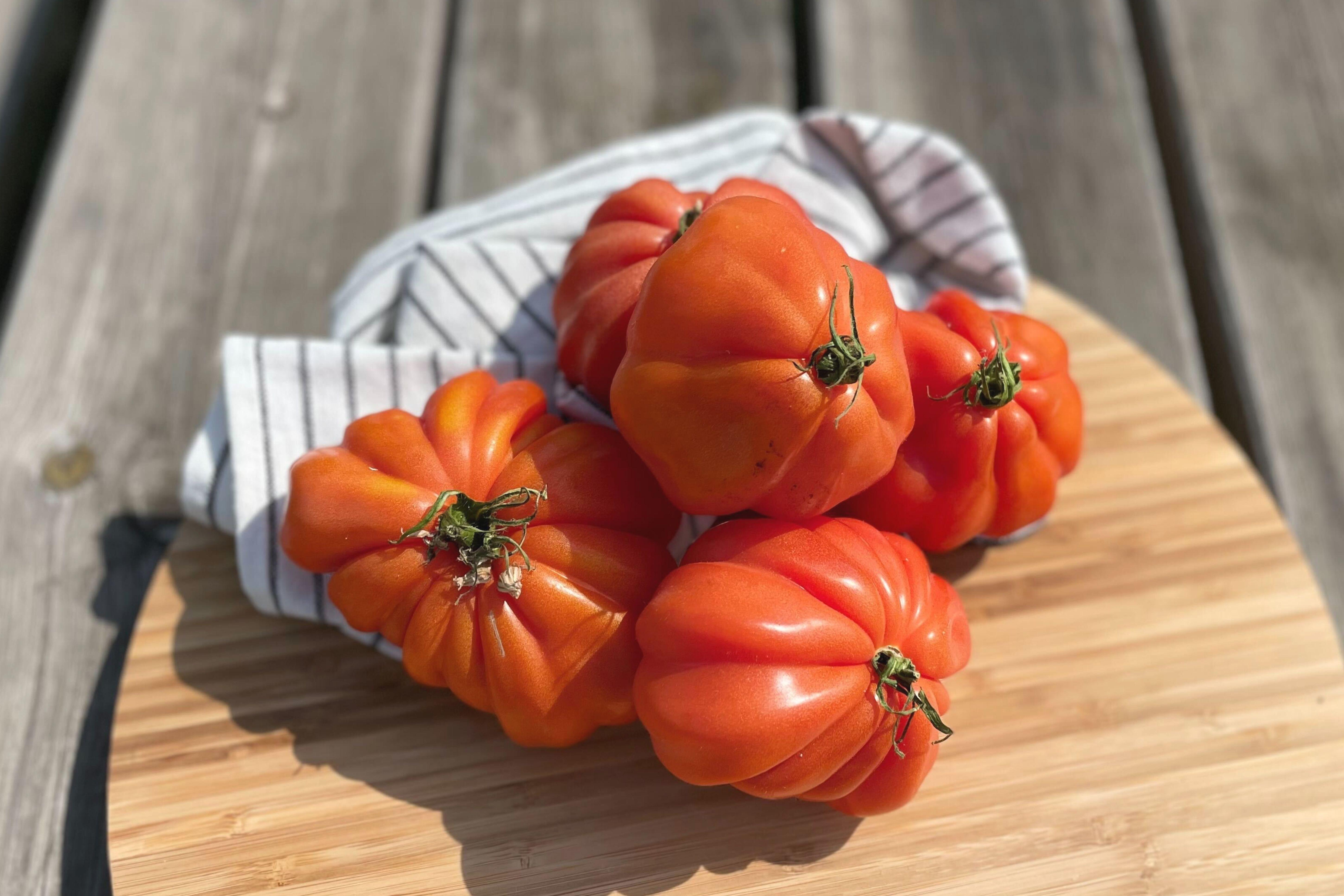 Bio Tomates Coeur de boeuf Coop. Interbio