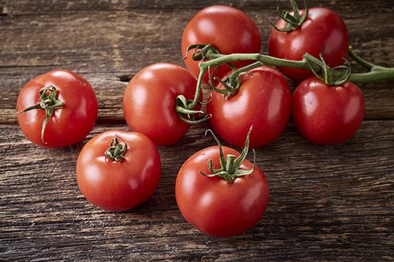 Bio Tomates grappe Francis Kestemont