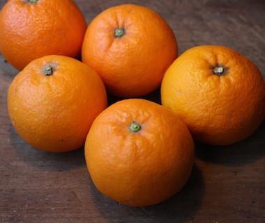 Bio Oranges Coop. Interbio