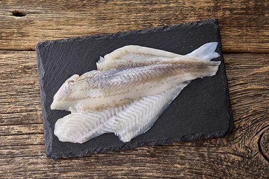 Poisson du jour, pêche durable en Mer du Nord Pintafish